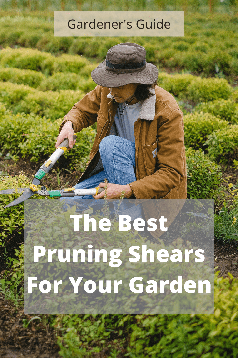 what are the very best pruning shears for your garden 60bbd48e6de2b What Are the very best Pruning Shears for Your Garden?